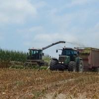 Life on the Farm + BIBPC