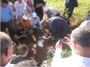 Nouvelle-image-22-300x225 فلاحو سوس في زيارة لفائدة مزارعي الأشجار المثمرة بمنطقة مكناس فلاحة
