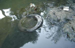Fangos del Huerva contaminados con selenio, a la altura de la Fuente de la Junquera. ANSAR -FOTO DEL HERALDO DE ARAGON
