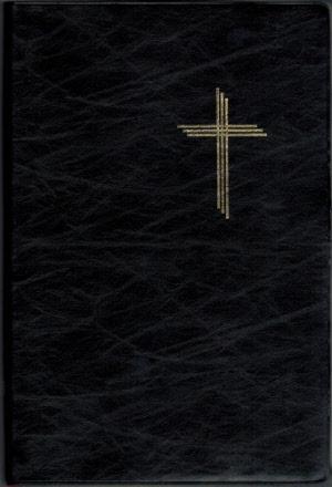 精讀本聖經 [簡]
