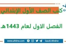 Photo of تحميل كتب الصف الأول الإبتدائي المنهج السعودي الجديد 1443هـ