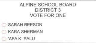 Alpine School Board