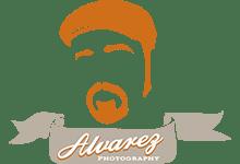 Alvarez Logo_Color_Clean copy