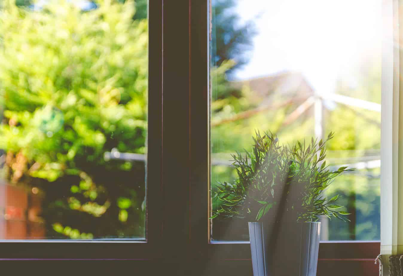Making Your Home Greener And Cleaner