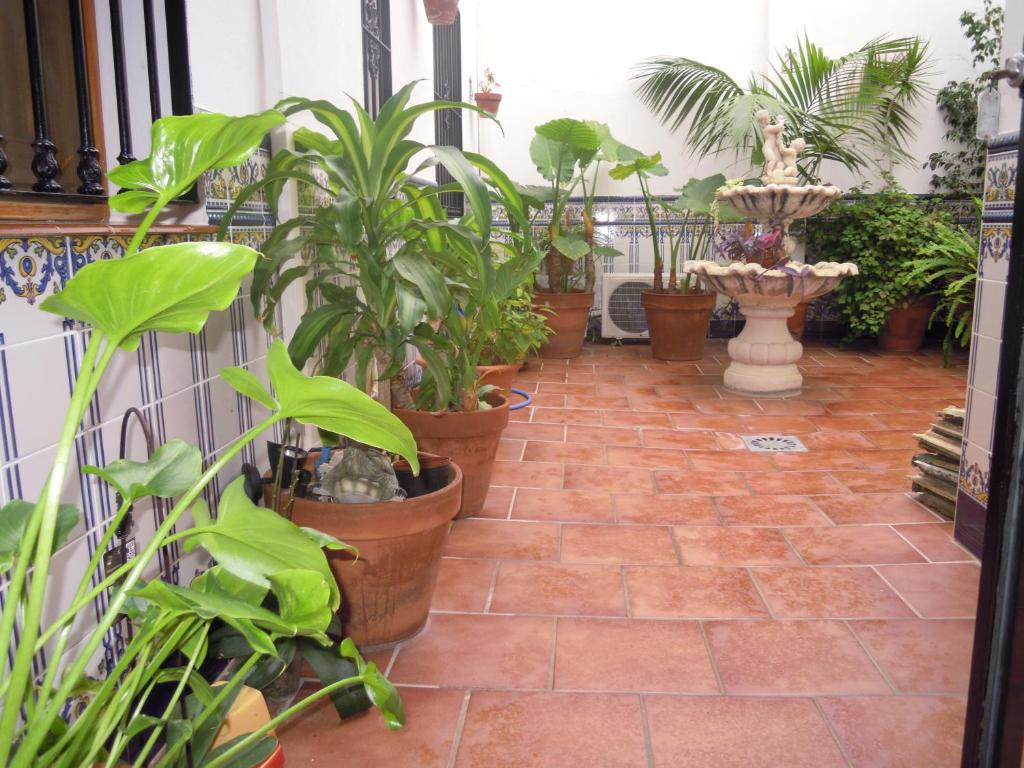 Hostal Moscatel Starting From 24 Eur Hotel In Malaga Spain