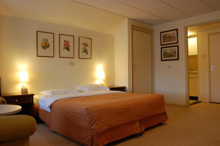 Crown Inn Starting From 46 Eur Hotel In Eindhoven