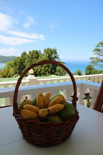 Seychelles Yellow Petals Anse Boileau Bedandbreakfast Eu
