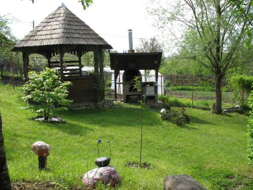 Casa Rustica Govora