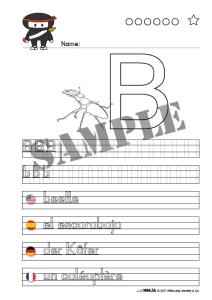 beetle • printable animal name sheet