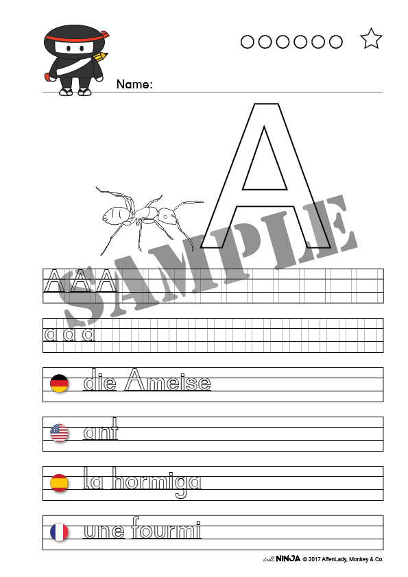 Animals A-Z • German 8