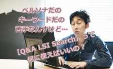 【Q&A LSI Search】って何に使えばいいの?