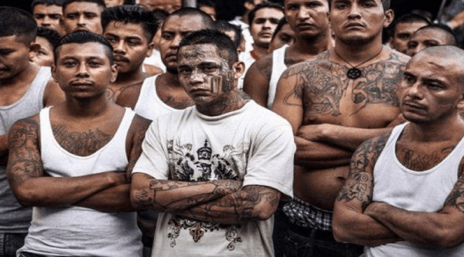Mara Salvatrucha Members MS13 https://peru.com/actualidad/internacionales/donald-trump-envia-mensaje-mara-salvatrucha-y-otras-pandillas-noticia-488892