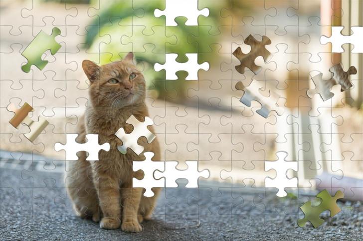 猫のパズル