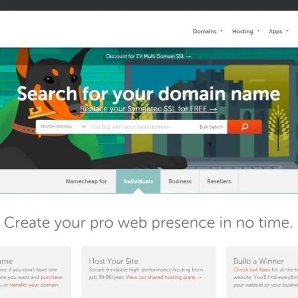 Belajar Tentang Domain Untuk Pemula