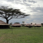 Mbugani Camp - overview