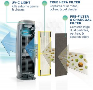 5 Best Air Purifiers For Mold Reduction