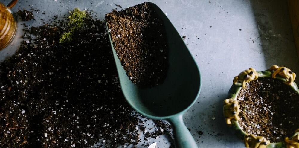 Dumpster Rental for Dirt Removal Winnipeg