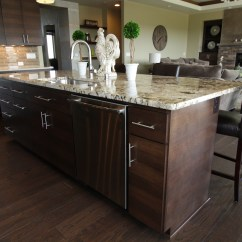 Brushed Nickel Kitchen Hardware Single Handle Pulldown Faucet Affordable Custom Cabinets - Showroom