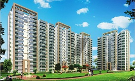 shree vardhman green court Gurgaon flats on sale