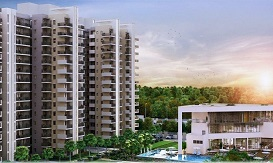 Godrej Nature Plus 33
