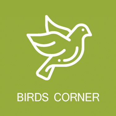 Birds Corner Ekam Homes