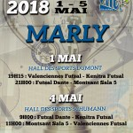 affiche-marly-web fef cup