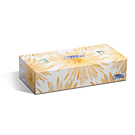 White Swan 2Ply Facial Tissue  Kruger Products  Away