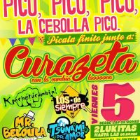 SANTIAGO: VIERNES 05 DE DICIEMBRE DE 2014 - PICO, PICO, PICO, LA CEBOLLA PICO