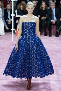 Christian Dior SS 15 COUTURE - PARIS COUTURE 36