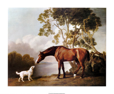 spt8016bay-horse-and-white-dog-posters