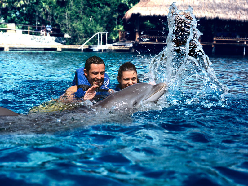 Combo: Swim with Dolphins in Xcaret