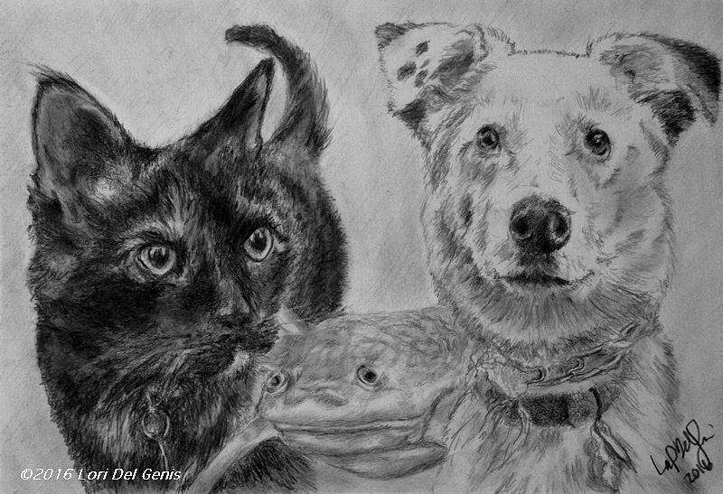 'Pet Sounds' - Graphite and charcoal portrait by Lori Del Genis of a dog, a cat and a frog. Not to scale.