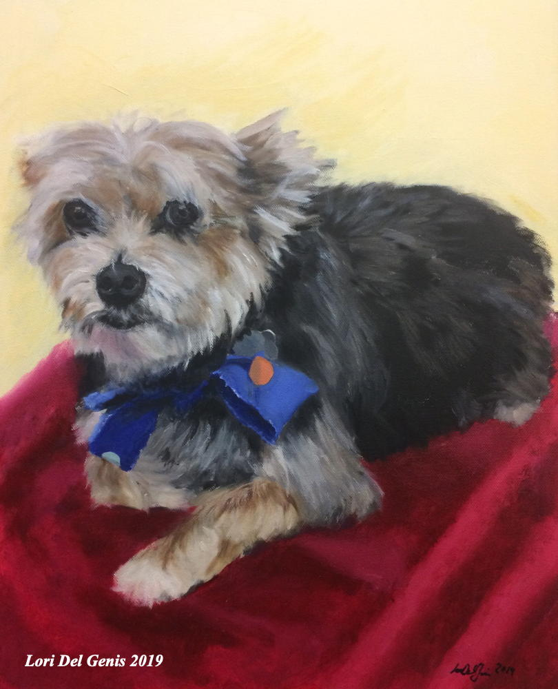 'Ami-' Pet painting of a well-groomed cute Yorkie wearing a blue bow-tie and lying on a red towel. (Lori Del Genis, 2019).