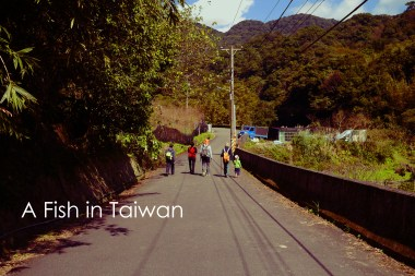 The trail isn't as crowded as many others in Yangmingshan.