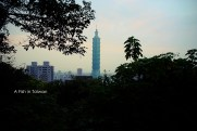Another shot of Taipei 101 through the trees further down the trail.