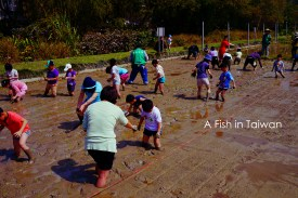 Children's activities at NTU Farm