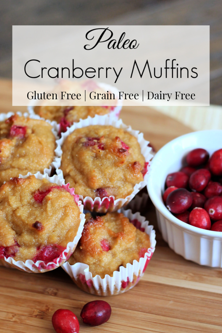 These paleo cranberry muffins are so simple to make and only require 5 ingredients. They are gluten-free, grain-free and dairy free, but you would never know!