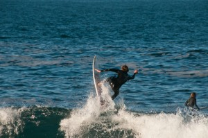 Surfer at Mossel Bay, South Africa (Shutterstock)