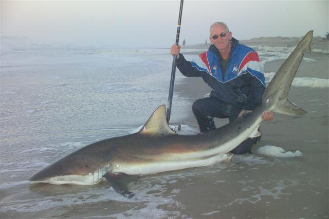 shark fishing in namibia