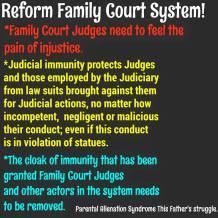 Judicial Descretion-Immunity - 2015