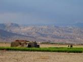 Iran - Aux abords du désert