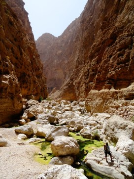 Oman - Le profond canyon