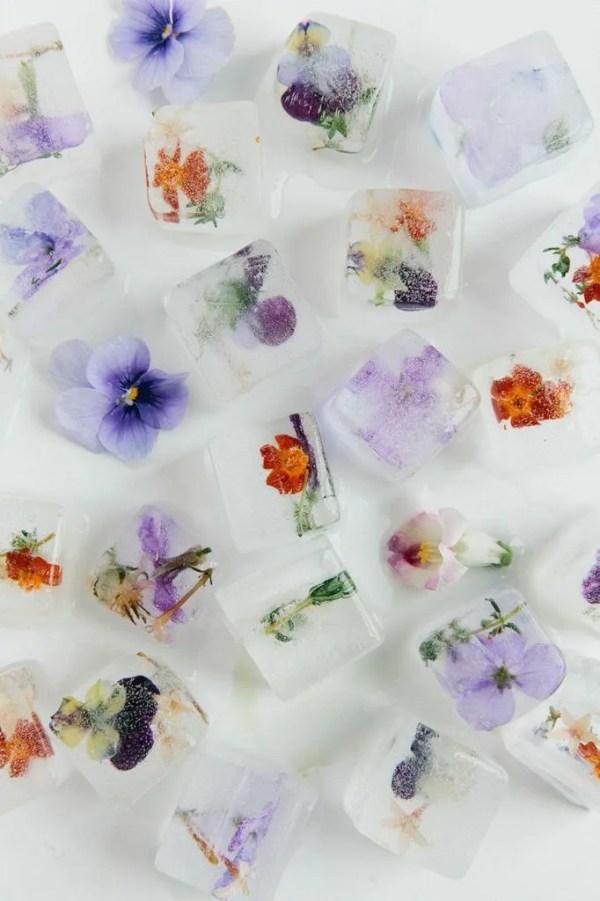 Ice cube cubetti di ghiaccio con fiori commestibili