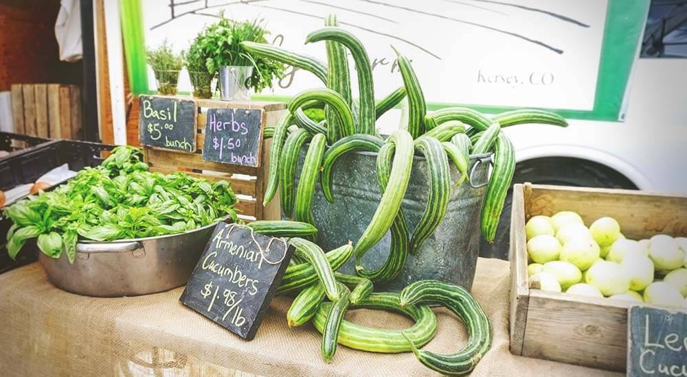 It's Harvest Time! Where to Go for Fresh, Healthy Foods in Northern Colorado