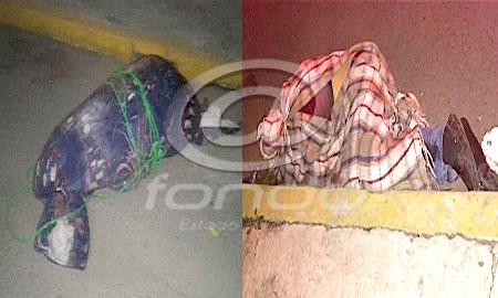 Autoridades investigan si fueron los mismos asesinos en ambos casos.