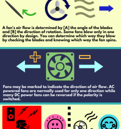how a fan blows and fan facts infographic [ 800 x 2000 Pixel ]