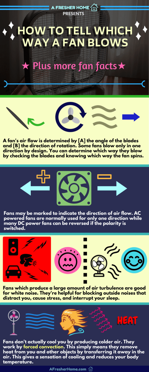 small resolution of how a fan blows and fan facts infographic