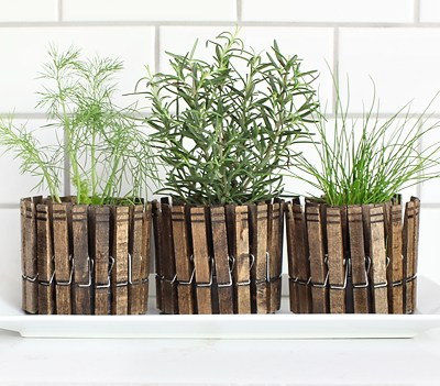 AWESOME WAYS TO USE FRESH HERBS IN YOUR HOME
