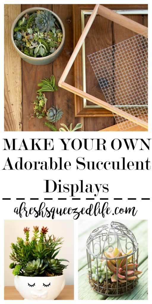 Succulents are easy to grow indoors. I have gathered some wonderful DIY terrariums and planters to spice up your home decor! DIY SUCCULENT DISPLAYS