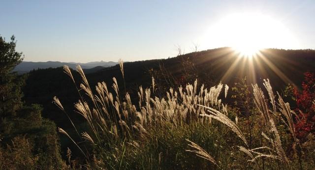 Exploring Carolina Fall Splendor in the Blue Ridge Mountains Blowing Rock